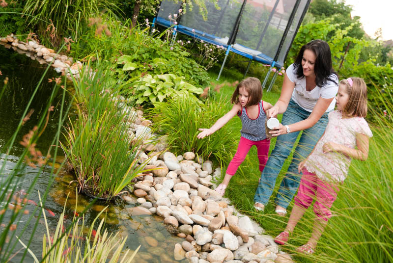 family feeding fish in garden pond with food